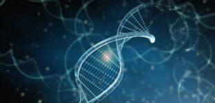 Bilim Temalı Youtube Kanalları Nelerdir?